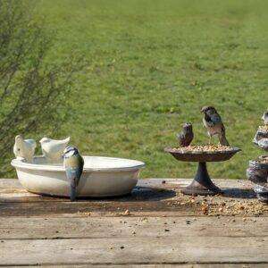 Bains d'oiseaux céramique