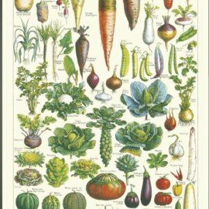 Affiche Jardin 50×70 cm